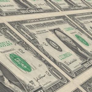 Госдума приняла закон о выплате зарплат в иностранной валюте
