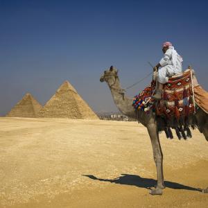 Как в условиях жары и отсутствия воды моются бедуины