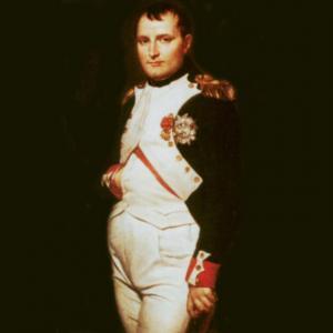Наследники Наполеона Бонапарта могли править Российской империей