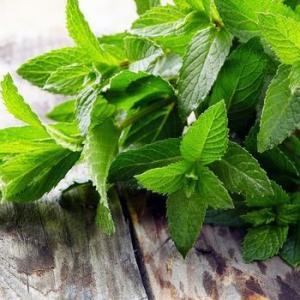 5 растений, устраняющих головную боль. Сохрани информацию, чтоб не потерять!