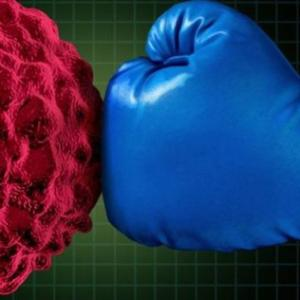 Главные защитники от онкологии