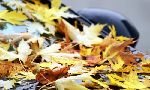 Как правильно подготовить машину к осени?