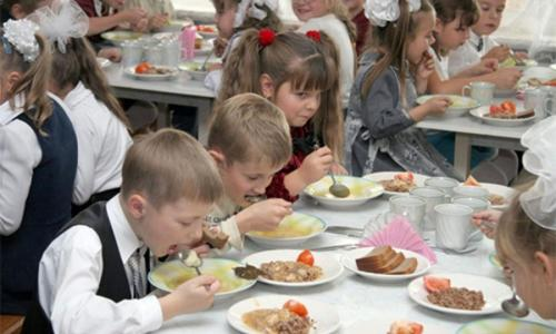 Бесплатные обеды в российских школах захотели отменить из-за «сытых мальчиков»