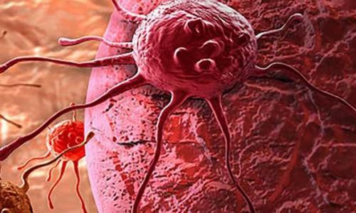 Найден механизм самоуничтожения раковых опухолей