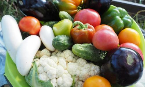 Вегетарианское меню может снизить риск развития подагры