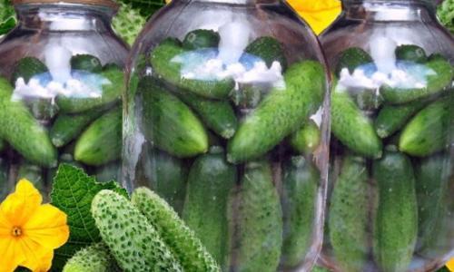 Маринуем огурцы: 5 советов, которые помогут получить хрустящий и ароматный эффект