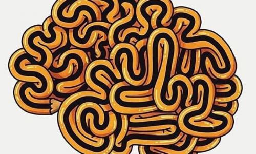5 тайн человеческого мозга