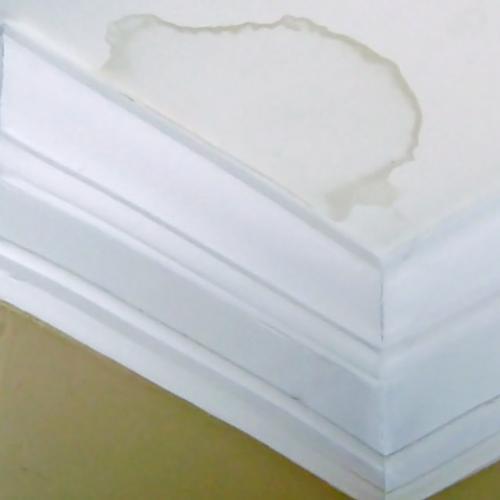 Пятновыводитель от протечки на потолке фото