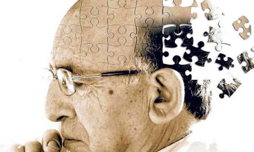 Мозг и привычки: как сохранить память в 80 лет