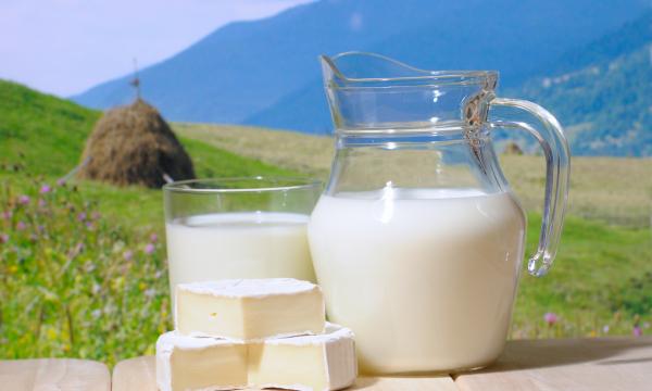 Пастеризованное и стерилизованное молоко: что более опасно