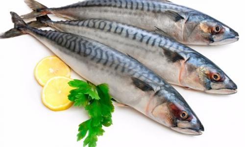 Сорта рыбы, которые лучше не есть никогда: