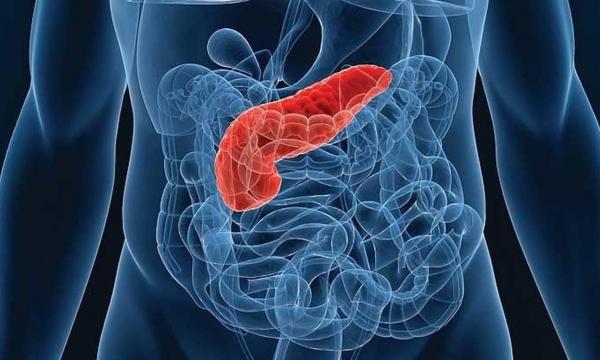 Рак поджелудочной железы. Обращайте внимание на цвет выделений