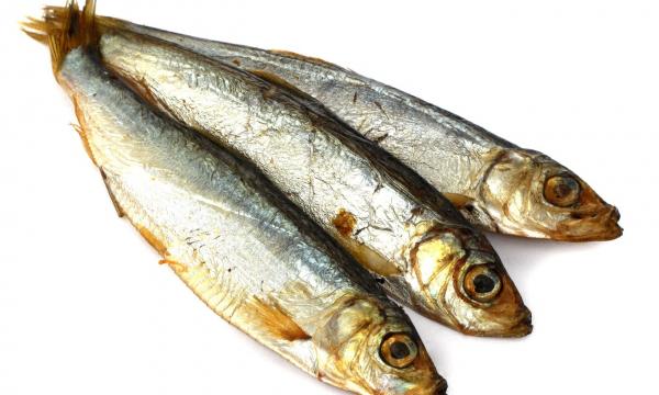 Рыба килька: кому она полезна, а кому нельзя есть шпроты